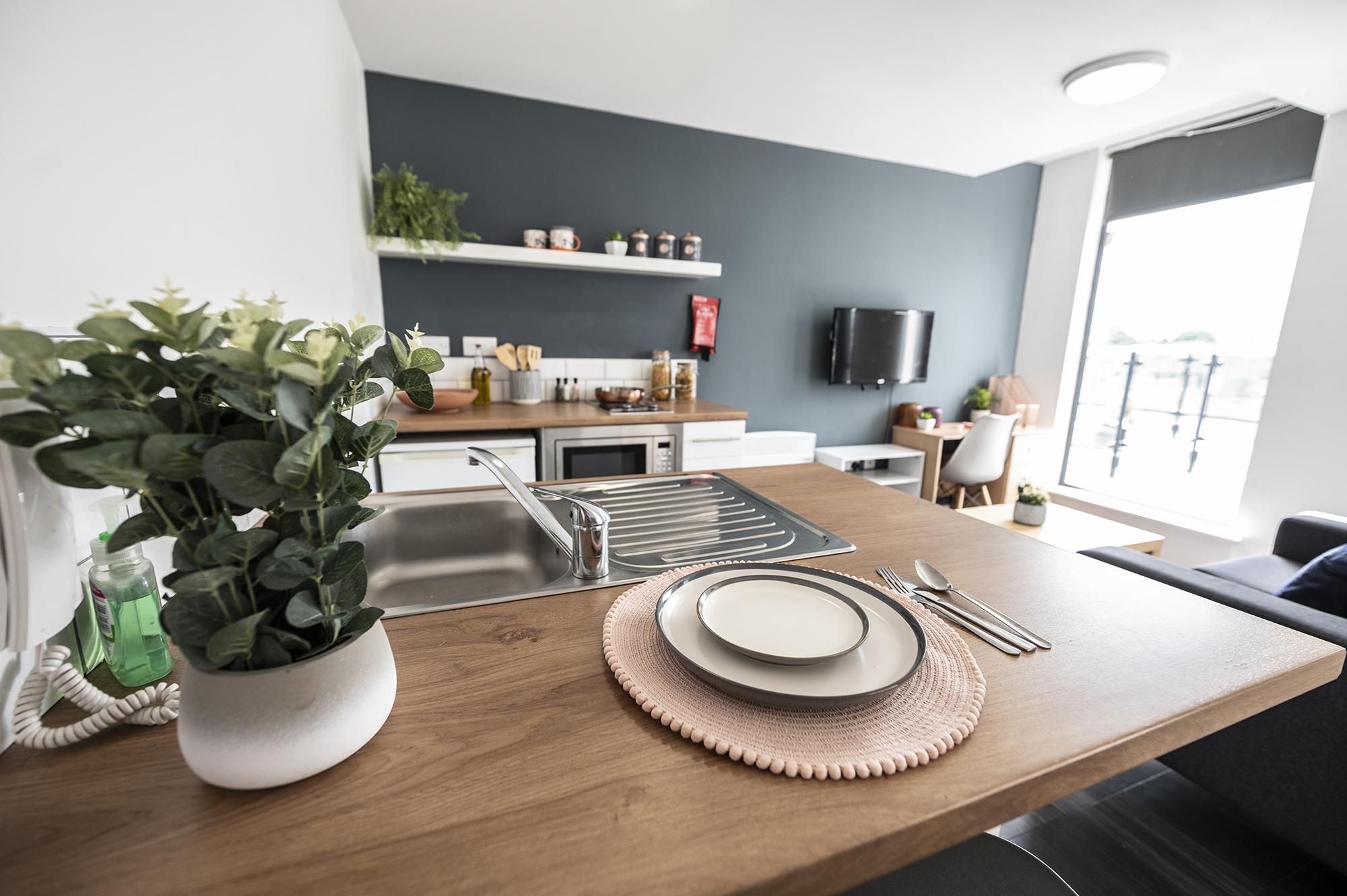 Apartment 2 (Penthouse) (17)