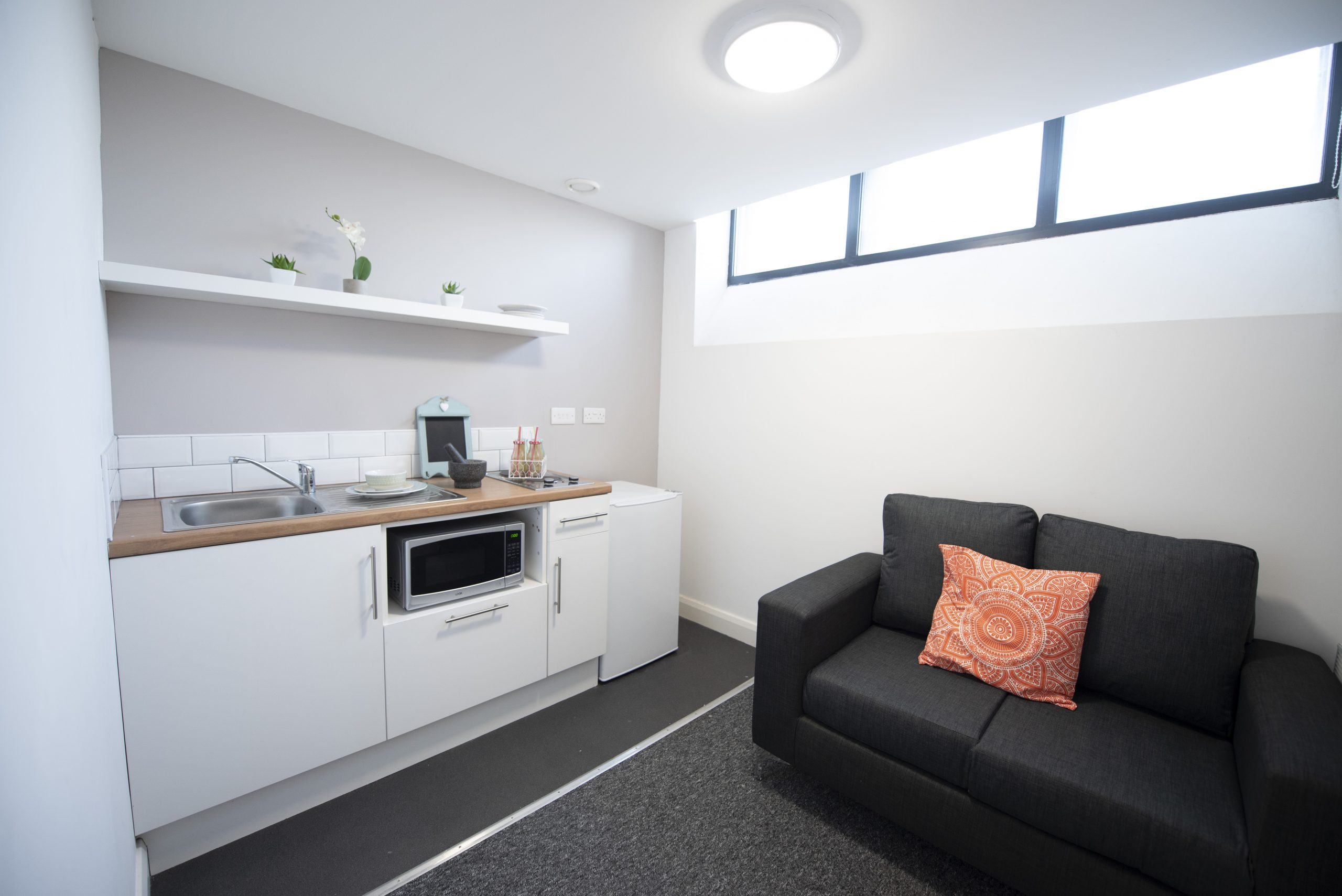 kitchen and living area in studio apartment